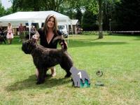 21. Yoline Britt v.d. Dambaern Hoeve - Beste jongste puppy